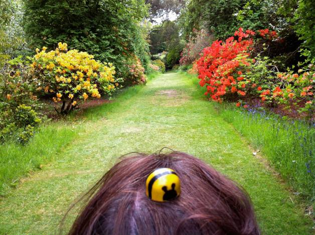 Bee-in-hair
