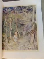 Arthur Rackham 1920 illustration for Irish Fairy Tales