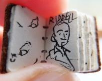 Chris Riddell - self portrait